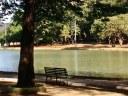 Vereador solicita reabertura dos Parques Municipais
